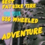 What's the Best Fat Bike Tire for Your Big Wheeled Adventure?